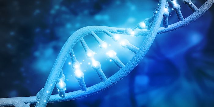 Theory of DNA